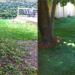 Kick Gas Lawn Care Image Gallery