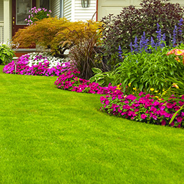 Kick Gas Lawn Care provides environmentally friendly lawn care and garden design services throughout Mississauga and the Greater Toronto Area.