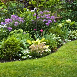 Kick Gas Lawn Care provides environmentally friendly garden maintenance services throughout Mississauga and the Greater Toronto Area.