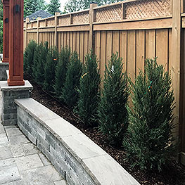 Kick Gas Lawn Care provides environmentally friendly landscaping and property maintenance services throughout Mississauga and the Greater Toronto Area.